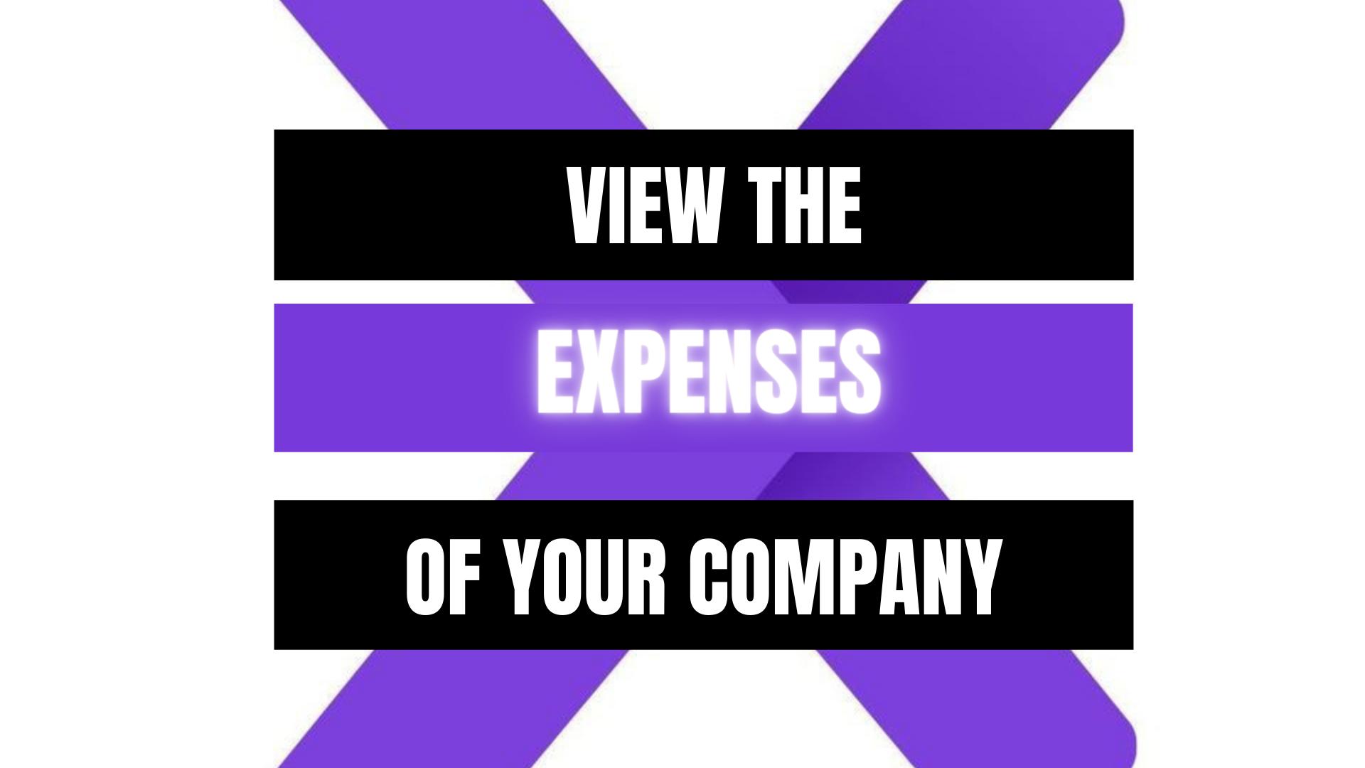 Peekaboox - View Company Expenses