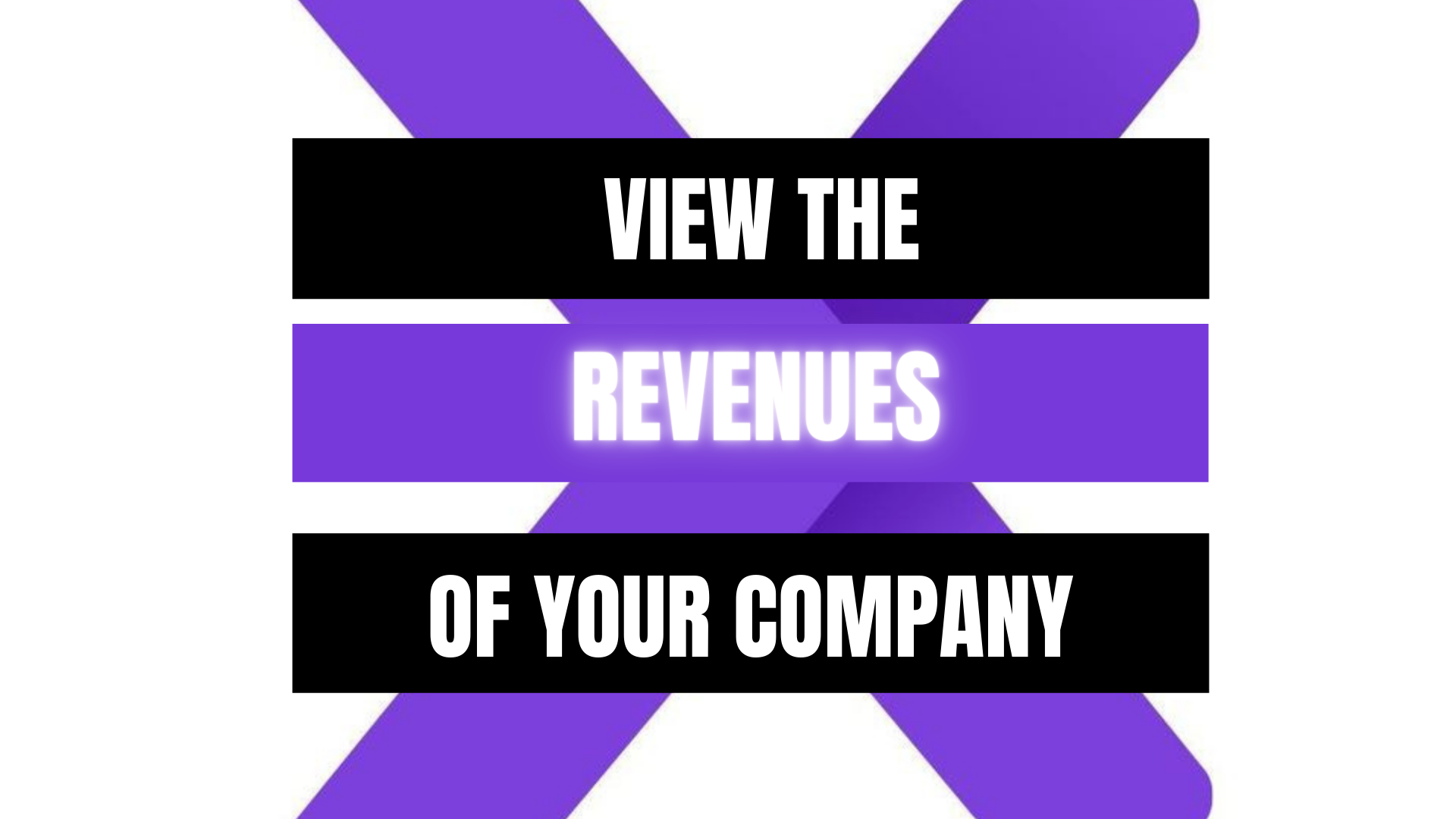 Peekaboox - View Company Revenue